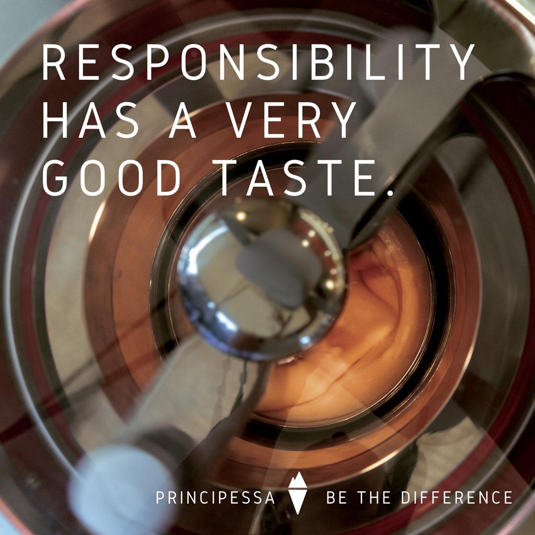 responsibility principessa environmental